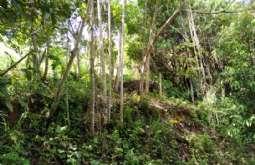 Terreno em Ilhabela/SP  Siriuba