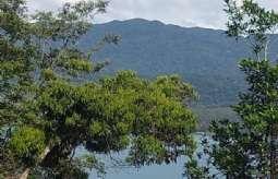 Terreno em Condomínio/loteamento Fechado em Ilhabela/SP  Feiticeira