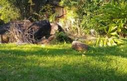 Terreno em Condomínio/loteamento Fechado em Ilhabela/SP  Reino