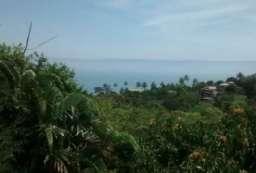 Terreno à venda  em Ilhabela/SP - Costa Bela REF:656