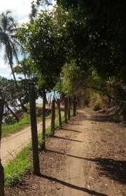 terreno-a-venda-em-ilhabela-sp-sao-sebastiao-ref-448 - Foto:9