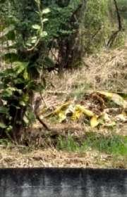 terreno-a-venda-em-ilhabela-sp-itaguacu-ref-421 - Foto:5