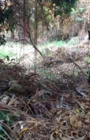 terreno-a-venda-em-ilhabela-sp-bexiga-ref-578 - Foto:3