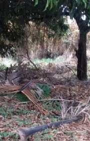 terreno-a-venda-em-ilhabela-sp-bexiga-ref-578 - Foto:4