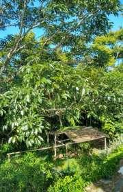 terreno-a-venda-em-ilhabela-sp-barra-velha-ref-703 - Foto:11