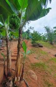 terreno-a-venda-em-ilhabela-sp-itaquanduba-ref-706 - Foto:13