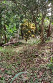 terreno-a-venda-em-ilhabela-sp-itapecerica-ref-712 - Foto:4