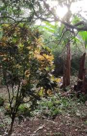 terreno-a-venda-em-ilhabela-sp-itapecerica-ref-712 - Foto:6