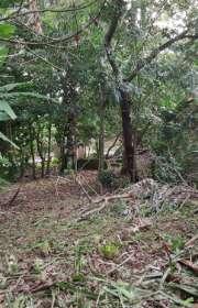 terreno-a-venda-em-ilhabela-sp-itapecerica-ref-712 - Foto:5