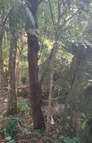 terreno-a-venda-em-ilhabela-sp-itapecerica-ref-712 - Foto:7