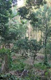 terreno-a-venda-em-ilhabela-sp-itapecerica-ref-712 - Foto:14