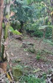 terreno-a-venda-em-ilhabela-sp-itapecerica-ref-712 - Foto:13