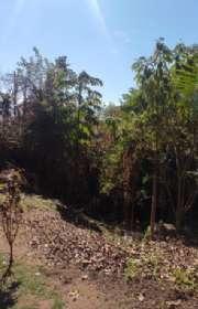 terreno-em-condominio-loteamento-fechado-a-venda-em-ilhabela-sp-arrozal-ref-686 - Foto:8