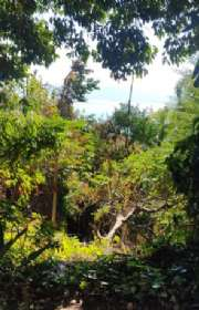 terreno-em-condominio-loteamento-fechado-a-venda-em-ilhabela-sp-arrozal-ref-686 - Foto:15